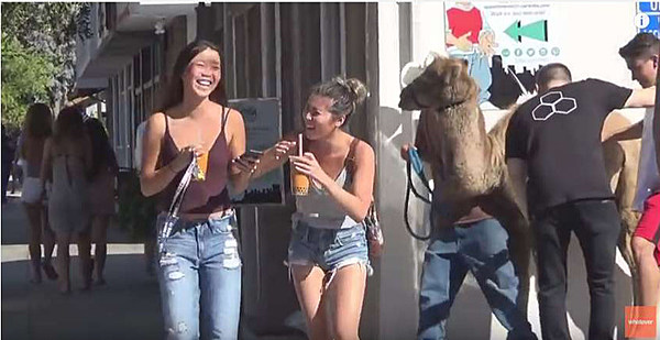 Nice Camel Toe [VIDEO]